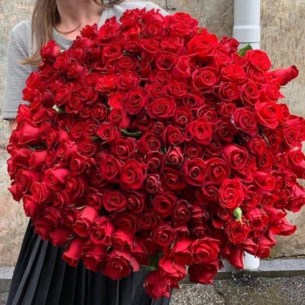 200 Long stem roses