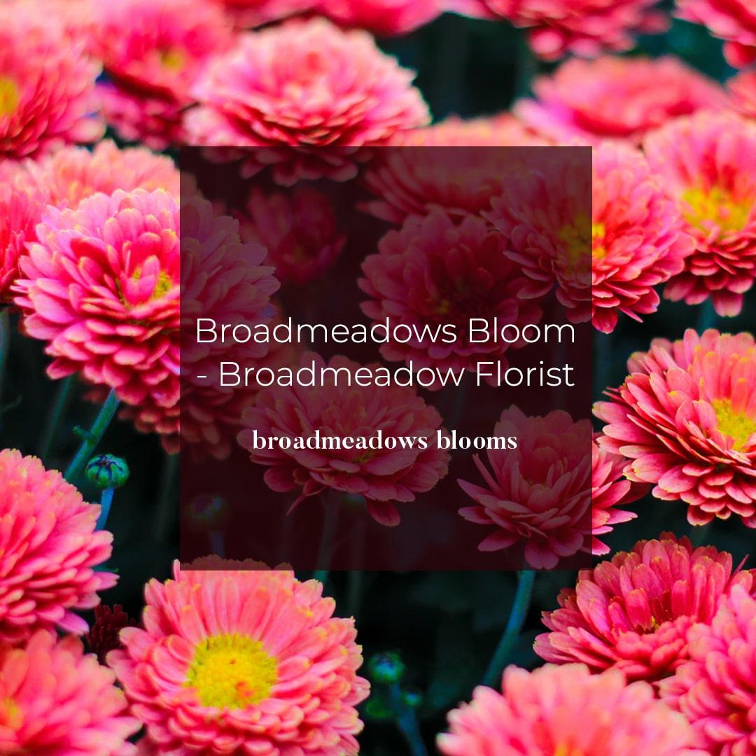Broadmeadows Florist